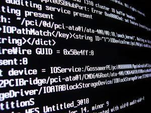 Bespoke Software